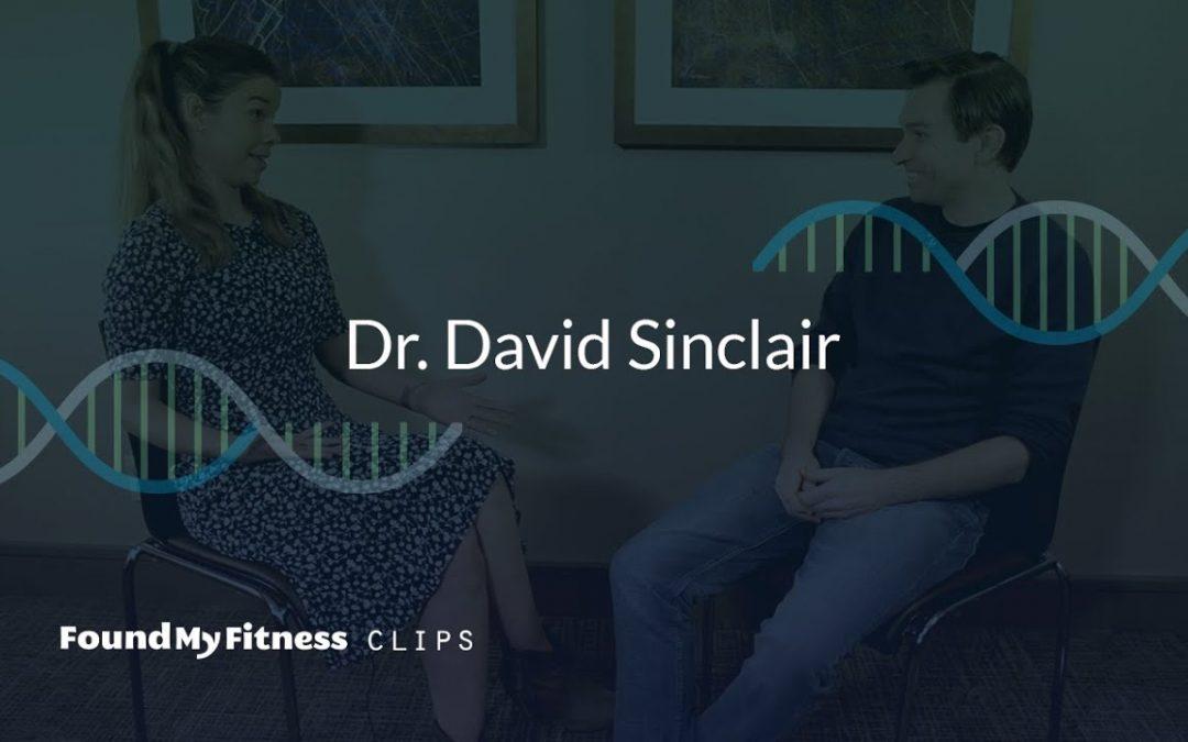 Resveratrol's impact on the cardiovascular system | David Sinclair
